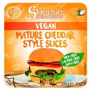 World Vegan Burger Month blog image