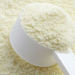 Dairy Powders